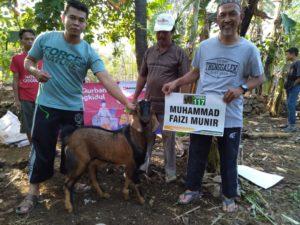 Salah satu hewan kurban dari shohibl kurban yang diberikan kepada LKSA PARS (8/11/2019)